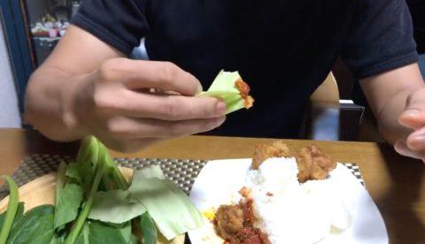 手食の説明